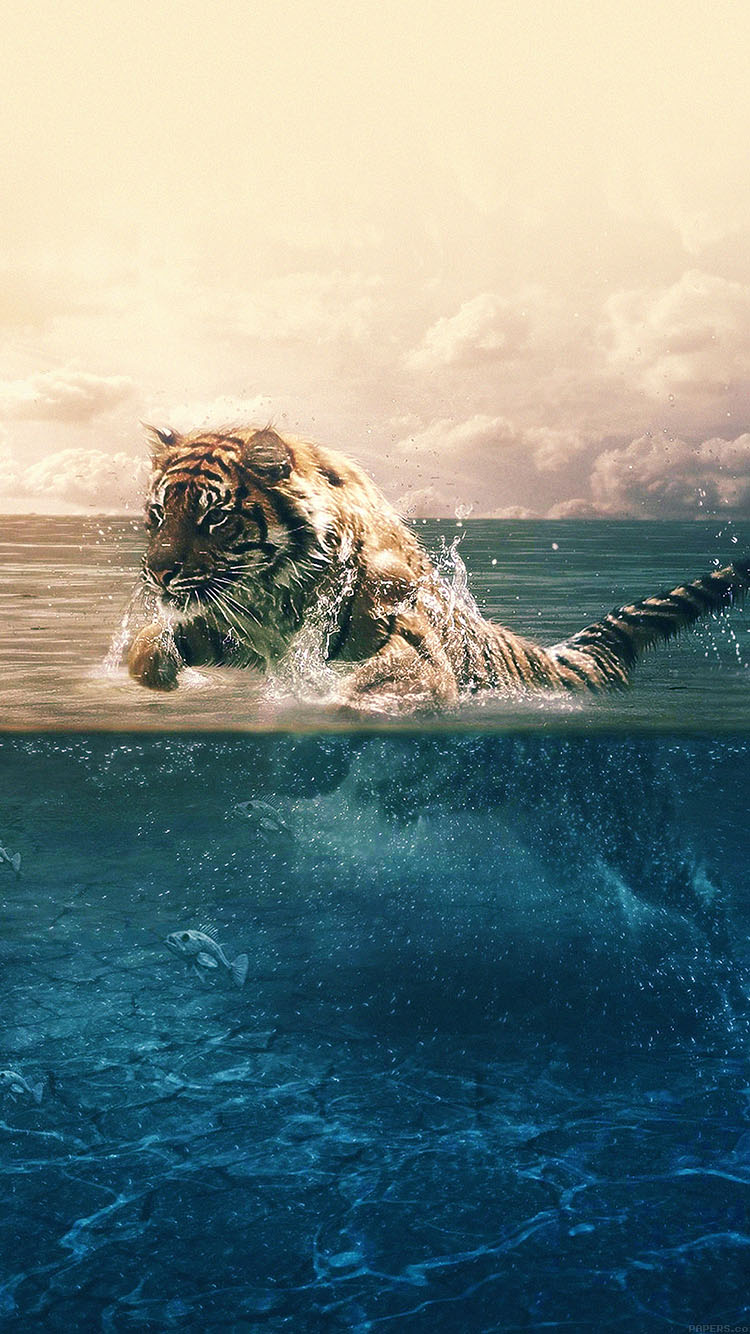Iphone7papers Ma95 Tiger Running Blue Sea Nature