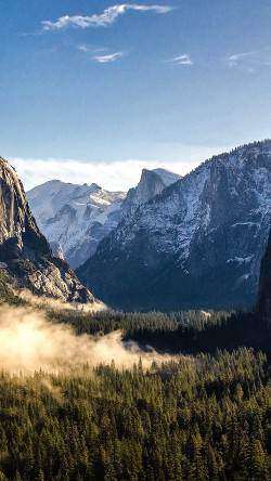 Good Morning Yosemite