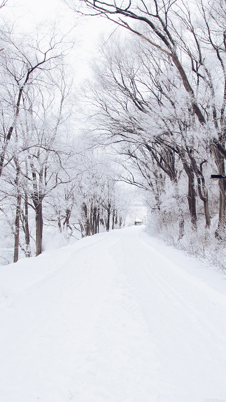 iPhone7papers - mp49-winter-road-romantic-nature-mountain-snow-white