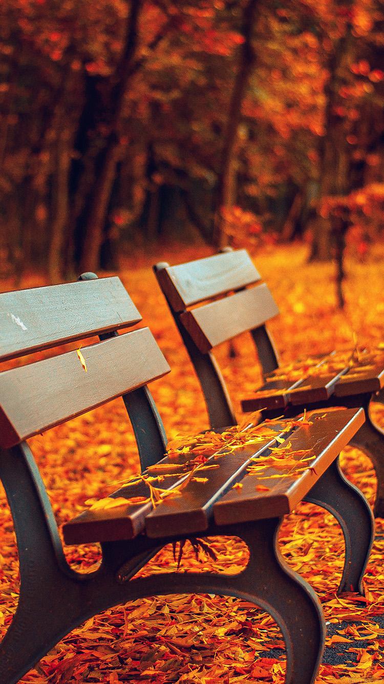 Fall Leaves Iphone Wallpaper Tumblr