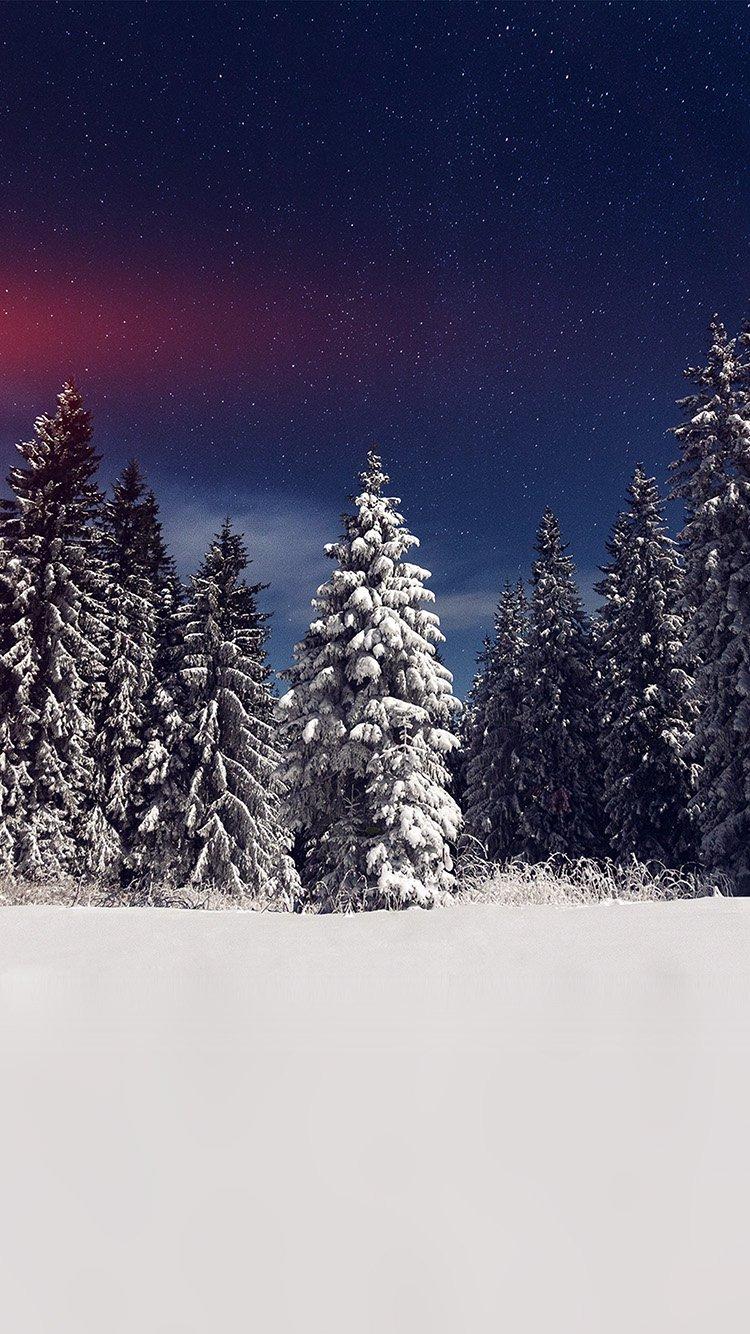 Iphone7papers Com Iphone7 Wallpaper Mz24 Snow Winter Wood