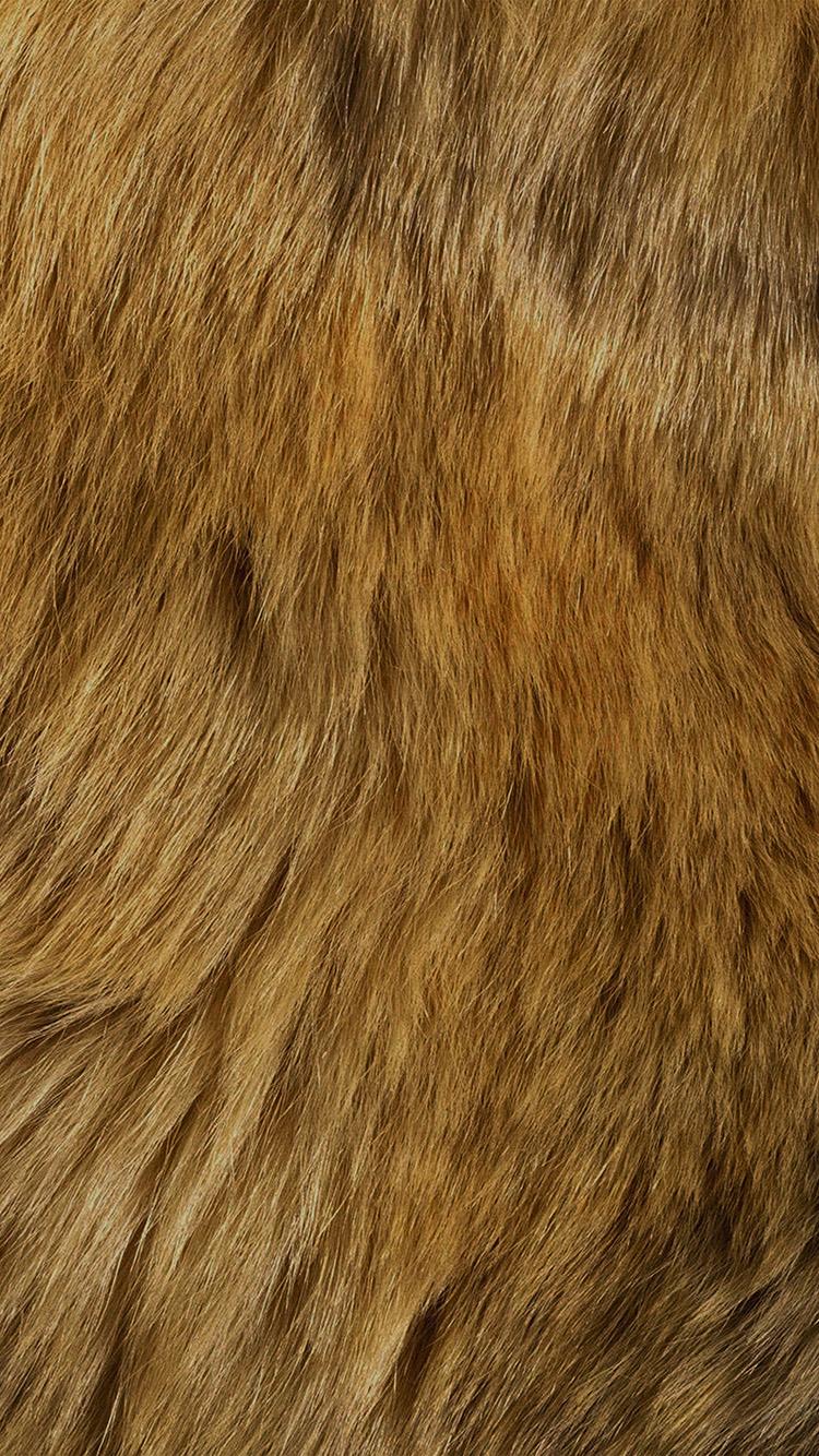 DOG FUR Brown dog fur. | Textures: Animal Skins | Pinterest ...