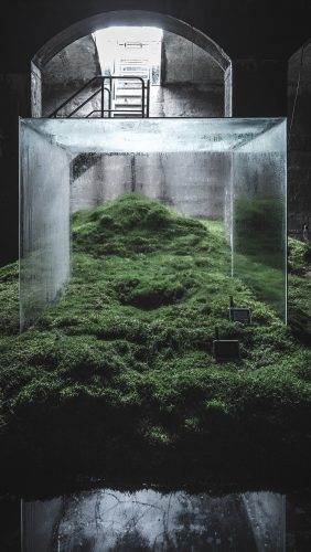 ba28-home-nature-green-illustration-art